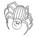 coloriages araignee