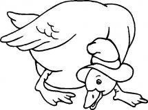 coloriages canard