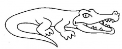 coloriages crocodile