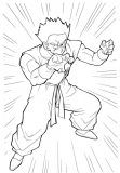 coloriages dragon ball z