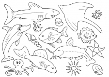 coloriages poisson