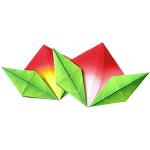 Origami - Piage Pêche en Papier